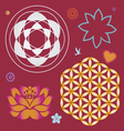 collection of symbols of a lotus and life flower vector image