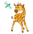 giraffe and dragonfly vector image