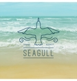 logo of seagull and waves vector image