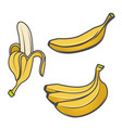 set of banana icons isolated on white background vector image