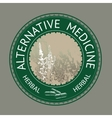 Badge template with text Alternative medicine vector image