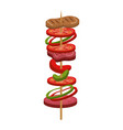 stick meat food icon vector image
