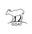 goats mountain on white background wild animals vector image