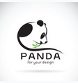 panda design on a white background wild animals vector image