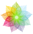 colorful spring leaves flower vector image