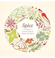 Spices and herbs icons in circle composition vector image