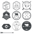 Set of vintage bear icons emblems and labels vector image
