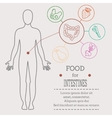 Food for intestines vector image