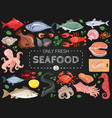 seafood colorful chalkboard menu poster vector image