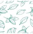 Eco peppermint tea fresh mint leaves menthol vector image
