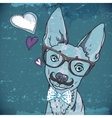 Hipster background with a dog vector image vector image