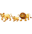 Lion family walking together vector image