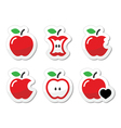 Apple apple core bitten half labels set vector image