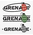 Grenade logo vector image