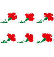 Set of carnations flowers vector image vector image