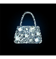 Diamond Handbag vector image