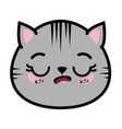 Isolated cute cat face vector image