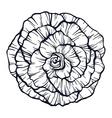 Outline rose vector image