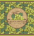 vintage green grapes label on seamless pattern vector image