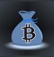 dark bitcoin money bag vector image