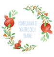 watercolor pomegranate organic wreath vector image