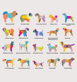 set of colorful mosaic dogs silhouettes-5 vector image