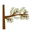 tree branch leaves icon vector image