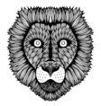 Zentangle stylized Tiger face vector image