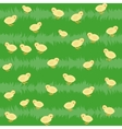Seamless pattern with chickens on the grass vector image vector image