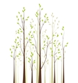 Trees 41 vector image vector image