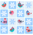 Birds and snowflakes vector image