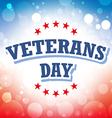 Veterans Day USA banner on celebration background vector image