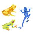 frog cartoon tropical animal cartoon nature icon vector image