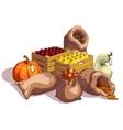 Fresh Vegetables At Farmers Market Design vector image