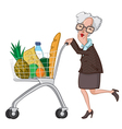 Grocery Shopping vector image