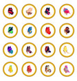 butterfly icon circle vector image