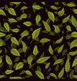 seamless texture of green leaf on black background vector image