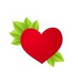 Heart with leaves vector image vector image