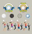 Volleyball Player and Graphic Elements vector image