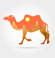silhouette of camel vector image