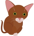 Funny brown cat with big green eyes isolated on vector image