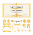 certificate sample with stamps vector image