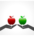 Red and green apple on hand vector image