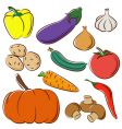 vegetable collection vector image