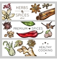 Spice And Herb Banner Set vector image