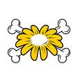 Flower and bone Daisy and crossbones Symbol flower vector image