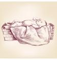Baby Jesus in the manger hand drawn llustration vector image