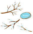 winter set with branches of tree and snow vector image