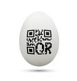 qr code on chicken egg vector image
