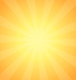 Vintage Sunrise Shining vector image